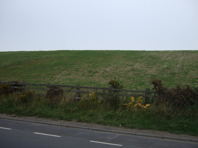 Grazing off Windhill Lane