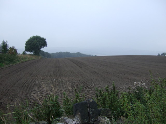 Ploughed field, Windhill Gate
