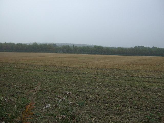 Farmland off Warren Lane
