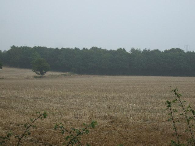 Farmland off Lee Lane