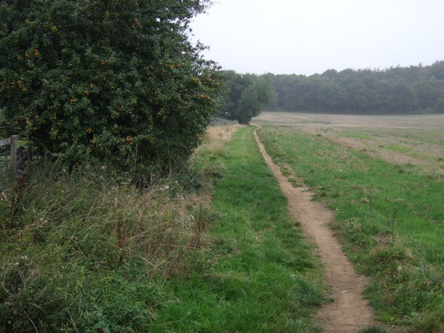 Footpath to Notton Wood Nature Reserve