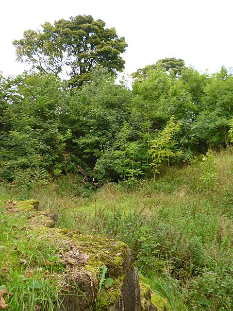 East Kirkton Quarry