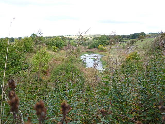 Petershill Wildlife Reserve