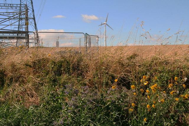 Pylon and a wind turbine behind Newbald Lodge