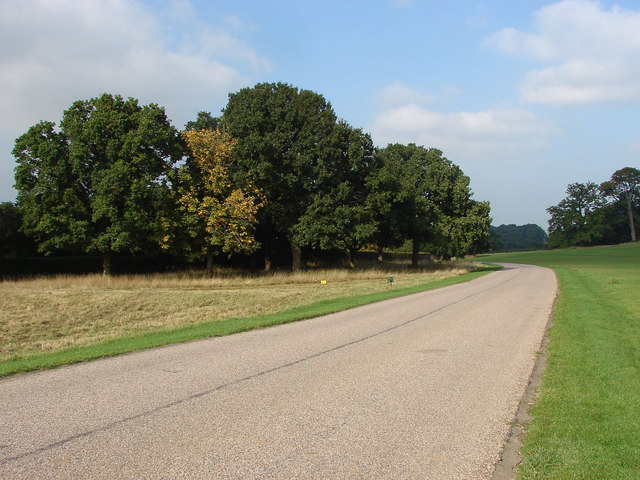 Prince Consort Drive