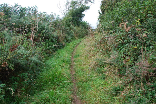 Track to Cottlass Farm