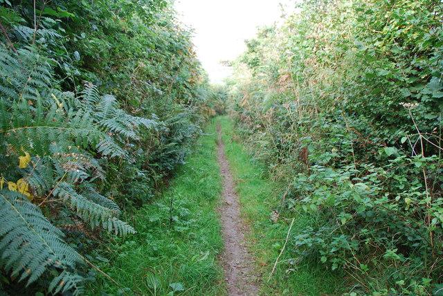 Path to Cottlass Farm