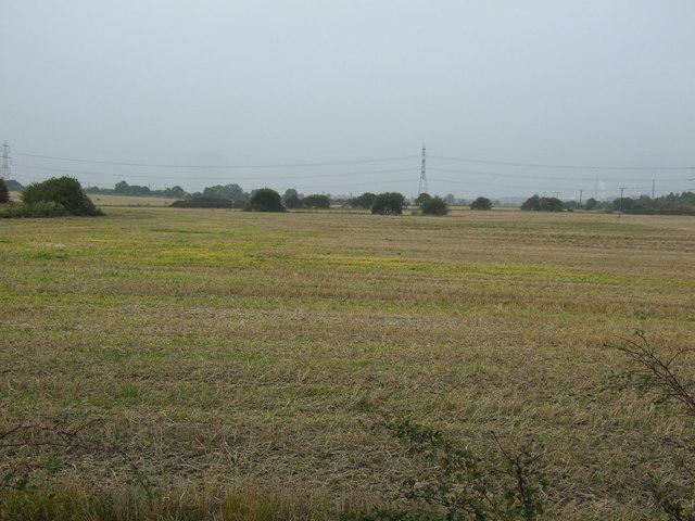 Farmland north of Shaw Lane