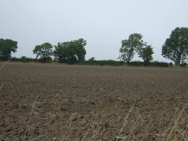 Ploughed field north of Shaw Lane