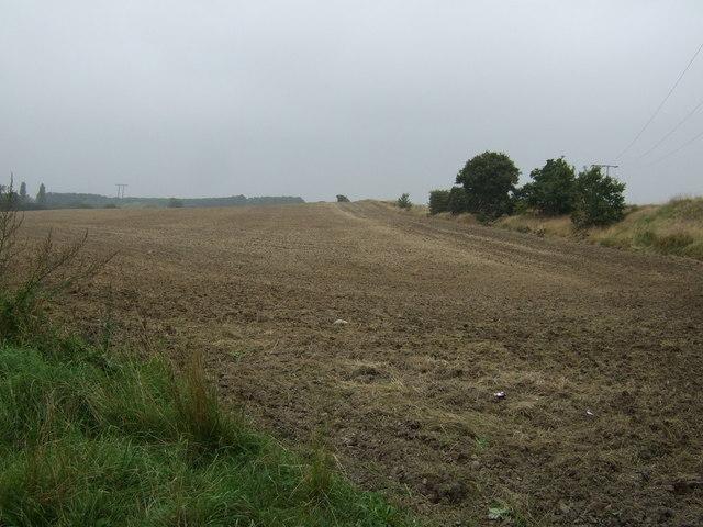 Farmland off Milefield Lane