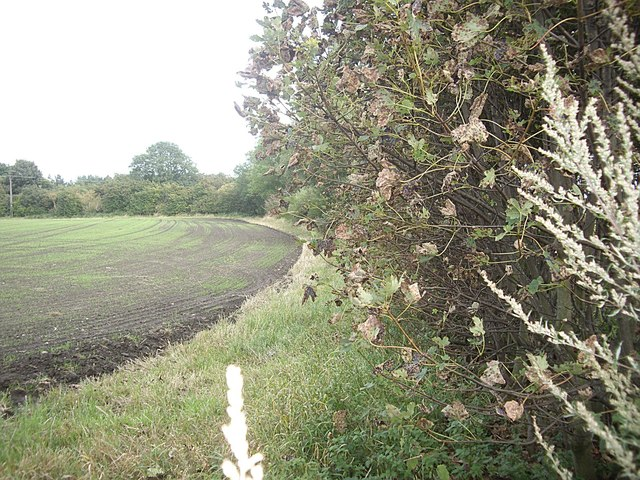 A freshly drilled field by B6532