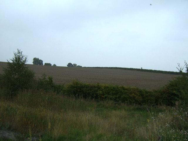 Farmland off the A6195