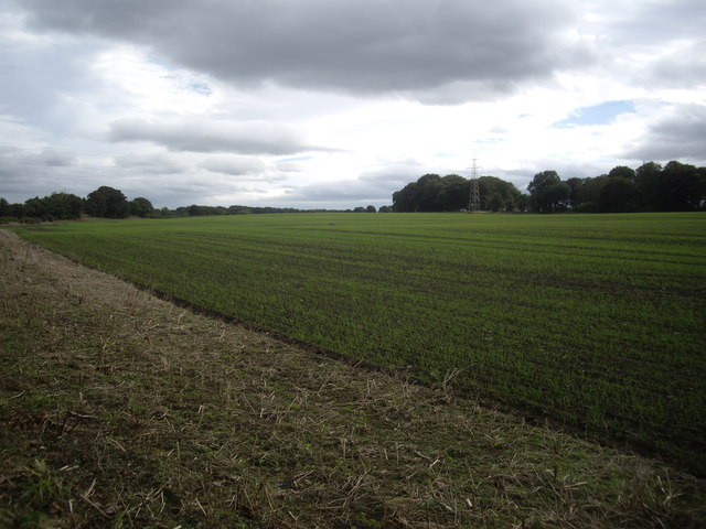 A large freshly sown field by B6532