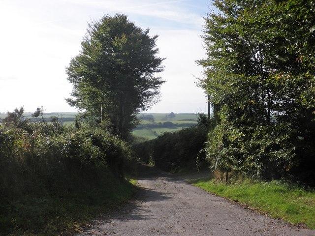Ashott Lane