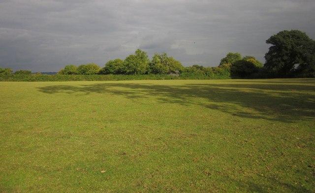 Field on Monarch's Way