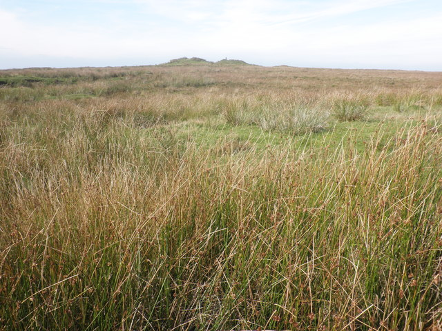 Looking west towards Five Barrows Hill