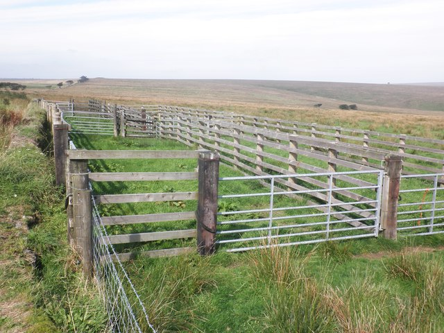 Sheepfold near Comerslade
