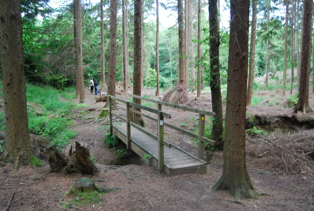 Footbridge, Lower Leggett's Wood