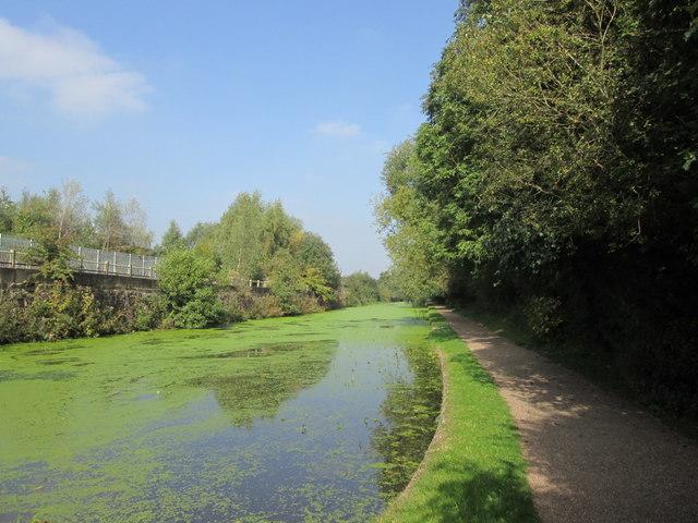 Erewash Canal near Trowell