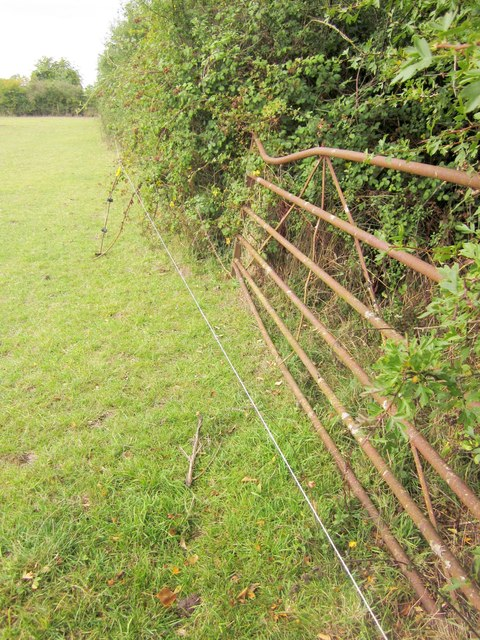 Electric fence on Monarch's Way