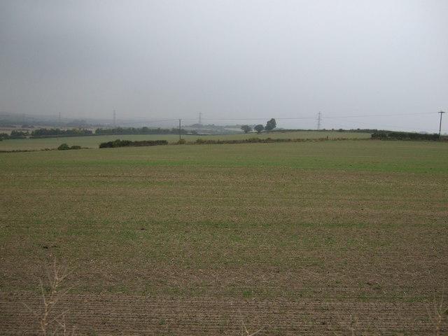 Farmland near Billingley