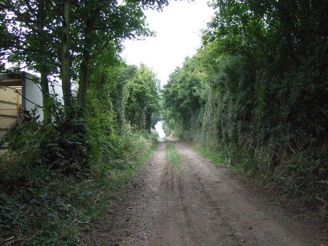 Farm track (bridleway)