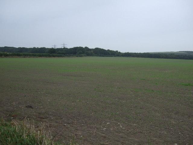 Farmland off Storrs Mill Lane