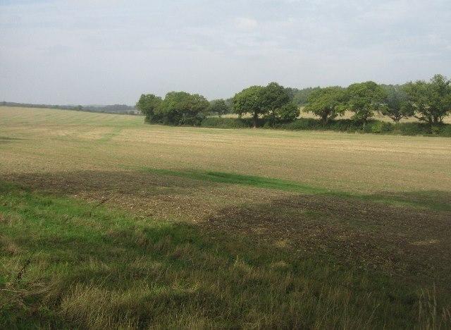 Fields near Blandy's Farm