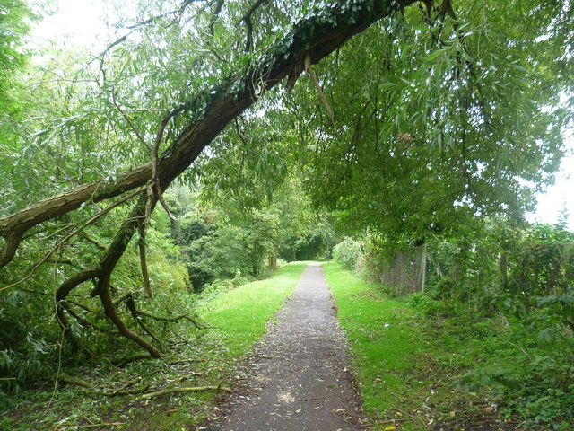 Footpath alongside The Cut