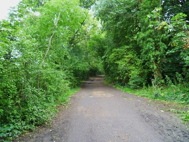 Orange Way after Wiltshire (614)