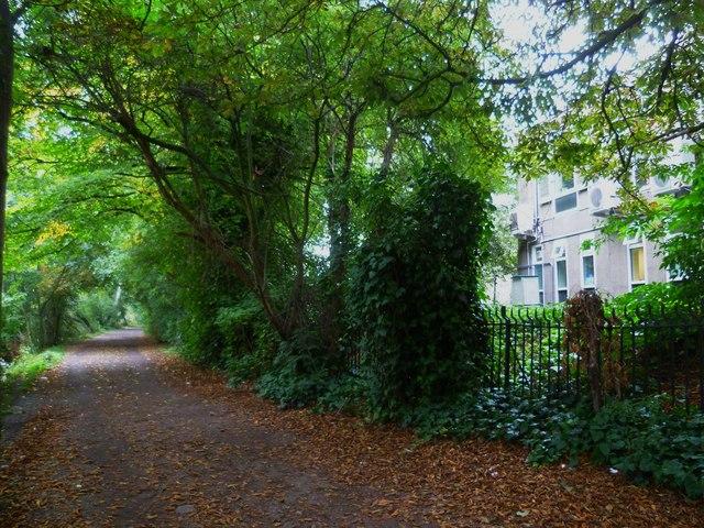 Orange Way after Wiltshire (618)