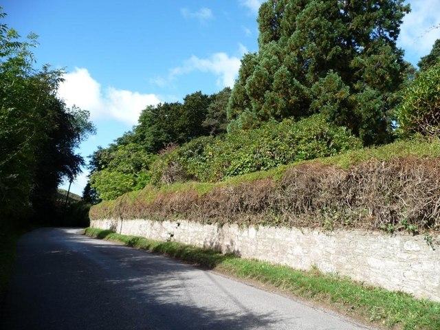 Redundant stile, Llwyncelyn boundary wall