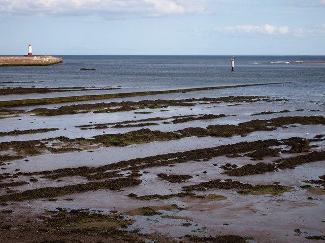 The Tweed Meets The Sea