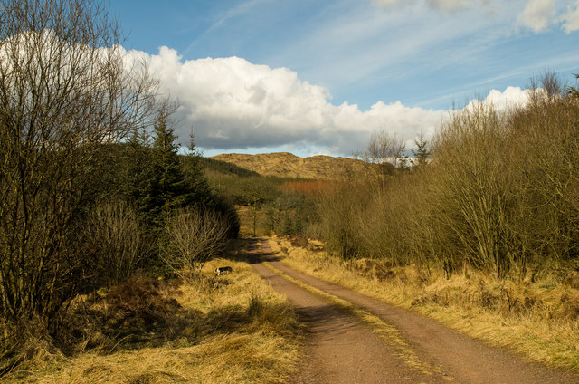 The road to Mochrum Fell