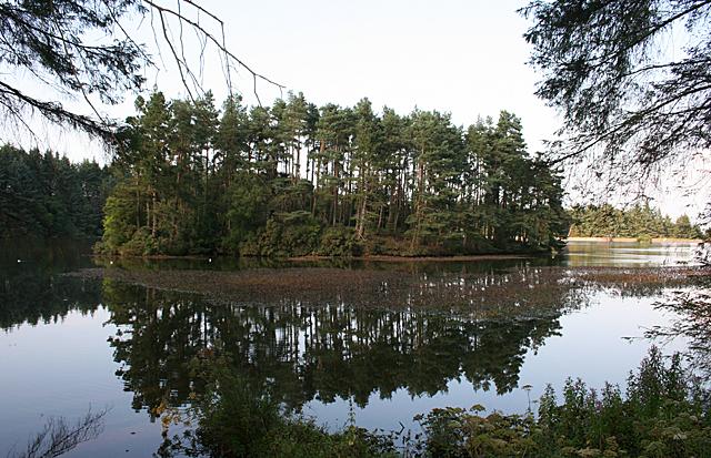 Island in Beecraigs Loch