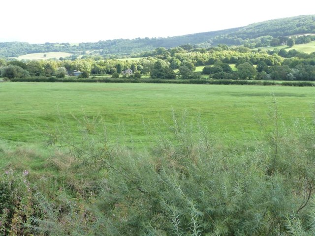 Meadow on the east bank of the Usk