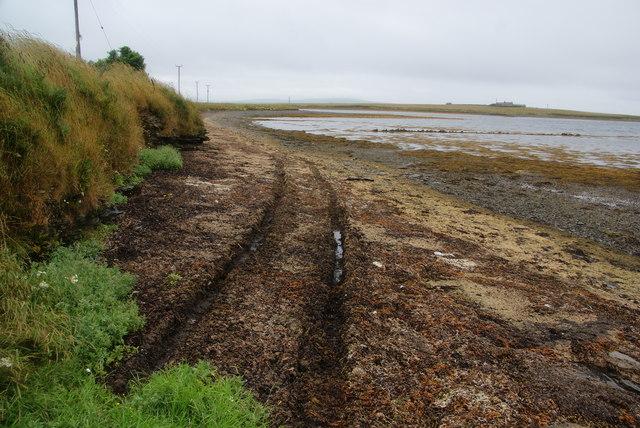 Seaside track near Holm Point