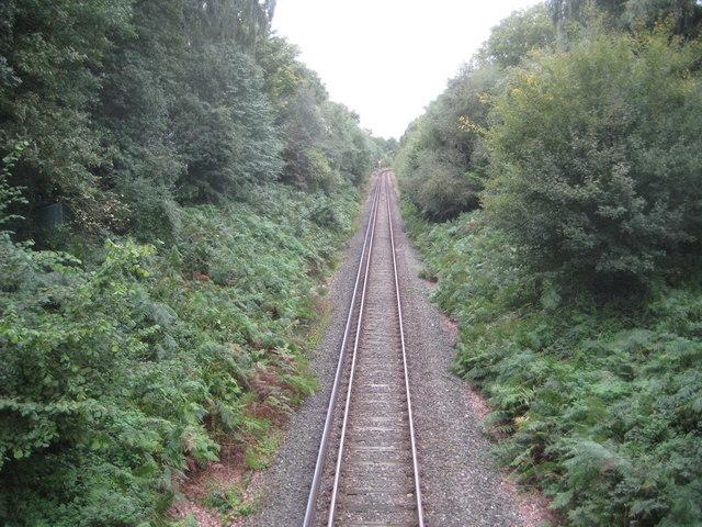 Petts Wood: Up Chislehurst Loop (1)