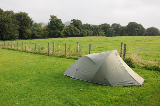 Tent on Lime Tree Park