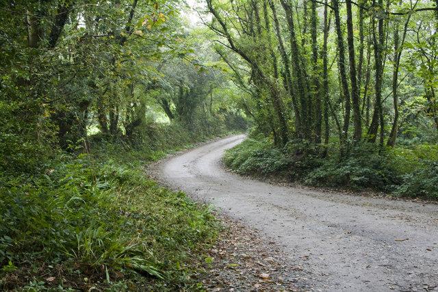 Lane to Binneys