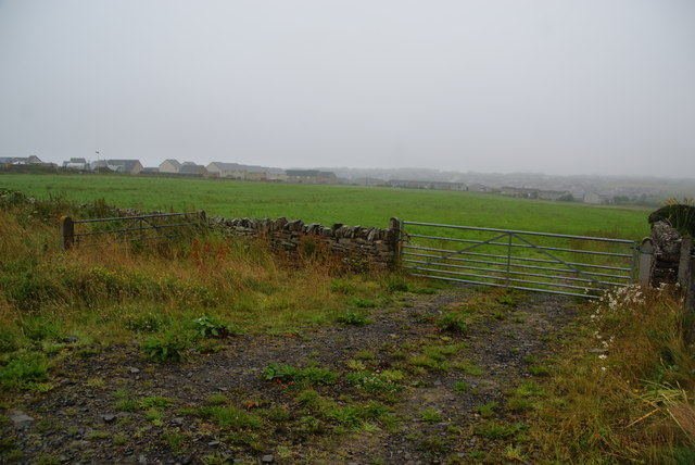 Green fields on the edge of Kirkwall