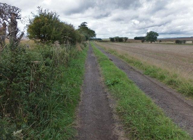 Bridleway to Allerdean