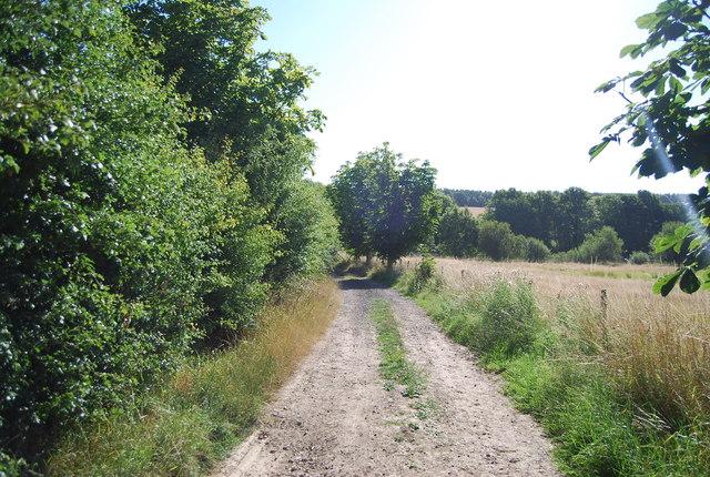 Bridleway by Salehurst Park Farm