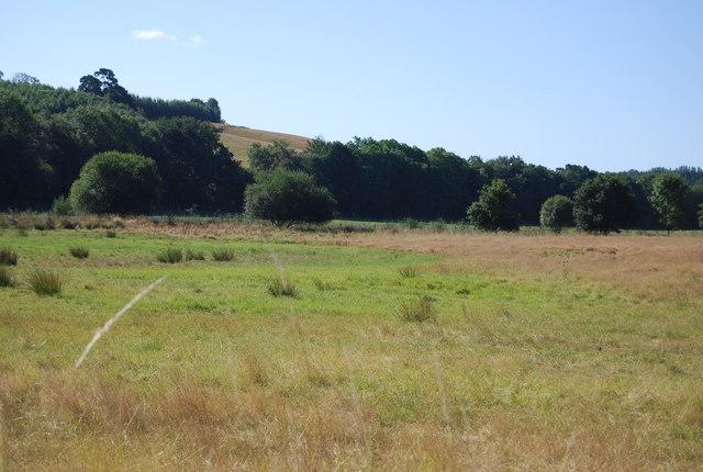 Flat land near Salehurst Park Farm