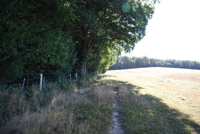 Bridleway along the edge of Wellhead Wood