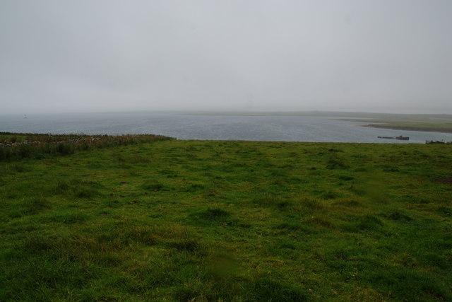 Green field near Heatherquoy