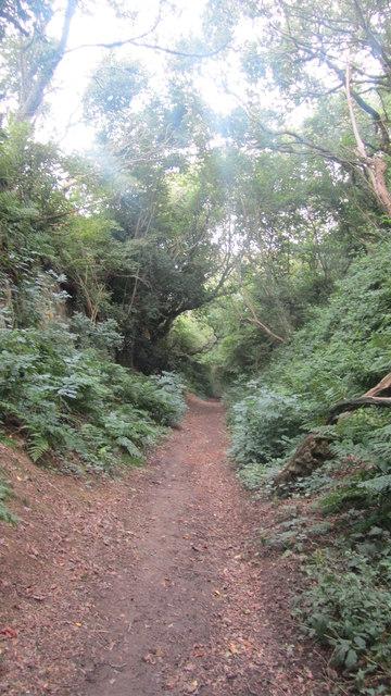 Hollow Lane footpath