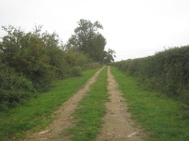 Fen Lane