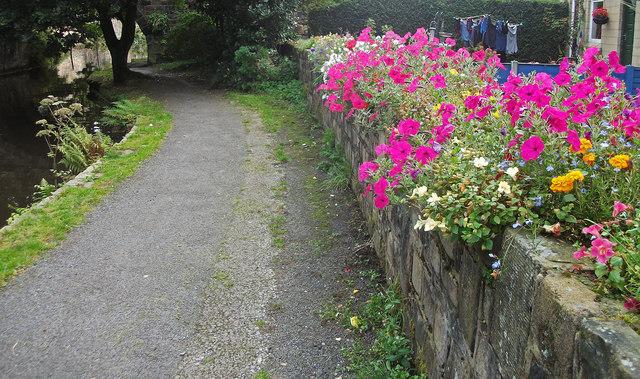 Cottage garden at Ealees