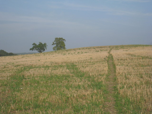 Footpath from Messingham